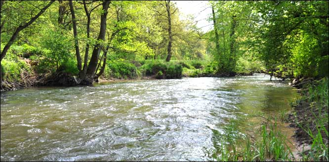 "Fluss ""Sinn"", Namenspatron unserer Region"